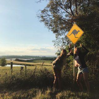 Gotta love Australia – 7 redenen om van Australië te houden