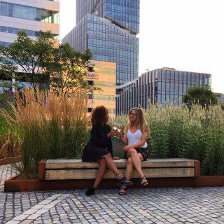 5x de leukste rooftops in Amsterdam