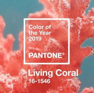 HOME: Nieuw jaar, nieuwe kleur!