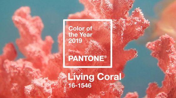 kleur van het jaar